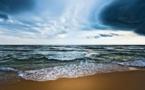 Changement climatique : la concentration de CO2 dans l'atmosphère atteint un record, selon l'OMM