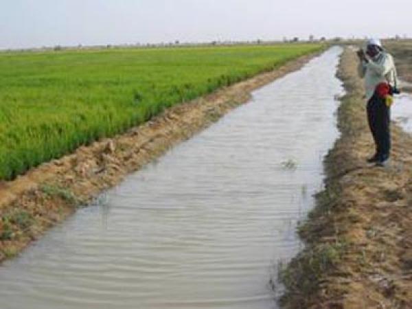 Aménagements des terres : L'Agence d'aménagement des terres valide un programme de 250 milliards