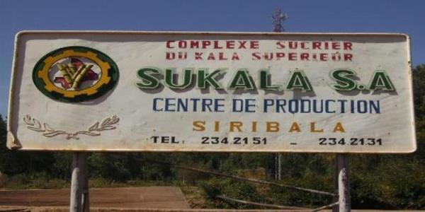 Campagne sucrière  au Mali : Plus de 100 000 tonnes de sucre attendues