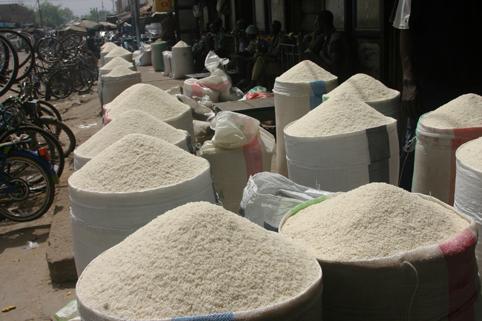 12ème édition de la Bourse aux céréales: Un bon filon pour les agriculteurs