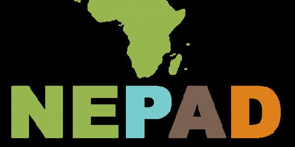 Union africaine: Le Nepad transformé en Agence de développement