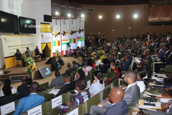 Mali : Eclairage sur la Stratégie Régionale d'Inclusion Financière de la BCEAO