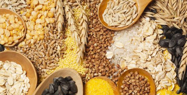 Céréales : L'offre mondiale estimée à 3425,8 millions de tonnes