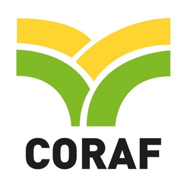 Industrie semencière en Afrique de l'Ouest : Les principaux acteurs planchent sur la mise en œuvre de la réglementation