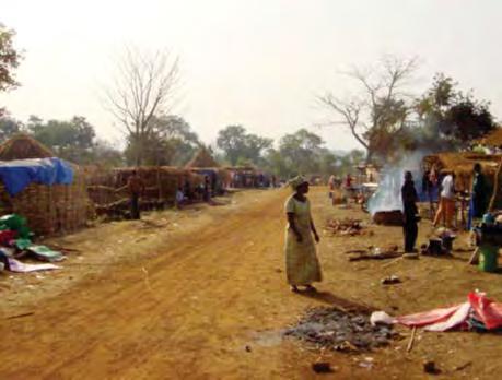 Mali :  « Il ne peut pas y avoir de développement économique de notre pays et de croissance économique sans le respect de l'environnement » selon le Premier ministre