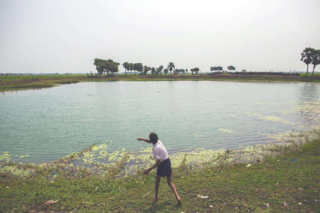 Photo PNUD Inde/Prashanth Vishwanatha Un étang dans le village de Dhokandpur, en Inde, collecte l'eau de pluie qui est ensuite utilisée par les villageois uniquement pour boire