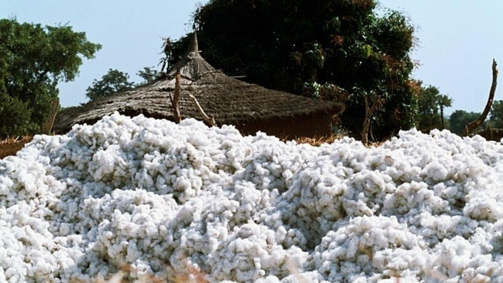 Commercialisation du coton malien : La Bdm-sa et la Cmdt signent une convention de 160 milliards de Fcfa
