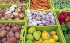 Industrie : Bougouni se dote d'une unité de séchage et de stockage de fruits et légumes