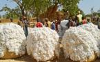 Filière coton : Le PM Abdoulaye Idrissa Maïga interpelle les pays développés pour trouver une solution juste et équitable à la question du «soutien interne»