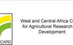 Coton, mais et bétail : Les acteurs se réunissent à Ouagadougou pour booster les filières