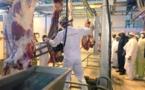 Promotion du sous-secteur élevage : L'abattoir « laham industries » confronté à des difficultés d'approvisionnement d'animaux de qualité