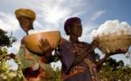 Secteur agricole : Le président IBK recommande une étude sur l'impact des 15% des ressources allouées