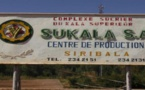 Mali : Mévente du sucre produit par N'SUKALA SA