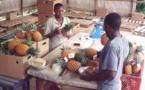 Banques : La problématique du financement des PME-PMI toujours préoccupante