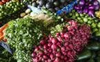 Près d'un tiers de la nourriture produite est perdue : la FAO appelle à arrêter le gaspillage alimentaire