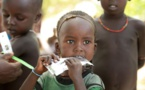 Renforcement de  la sécurité alimentaire en Afrique : Une coalition de banques multilatérales et de partenaires au développement annonce plus de 17 milliards USD