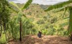 La désertification et la sécheresse déstabilisent le bien-être de 3,2 milliards de personnes