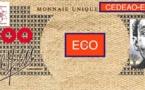 CEDEAO : L'Eco, une monnaie unique, plusieurs équations !